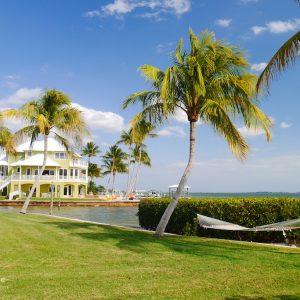 Florida Paradies