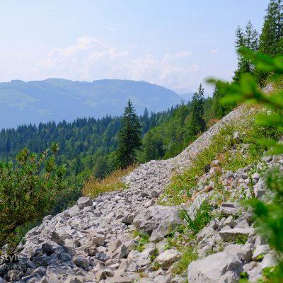 Wilder Kaiser Ellmau Wandern Österreich 00001